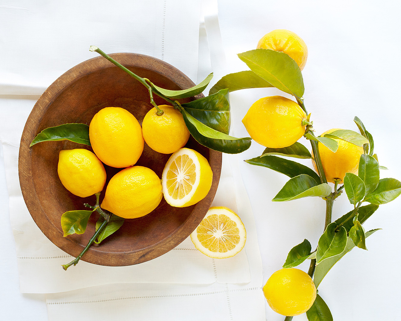 Still life of Myer lemons  | Trinette+Chris Photographers