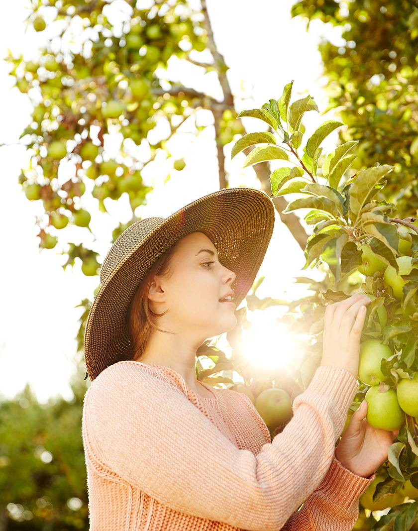 Woman picking apples  | Trinette+Chris Photographers