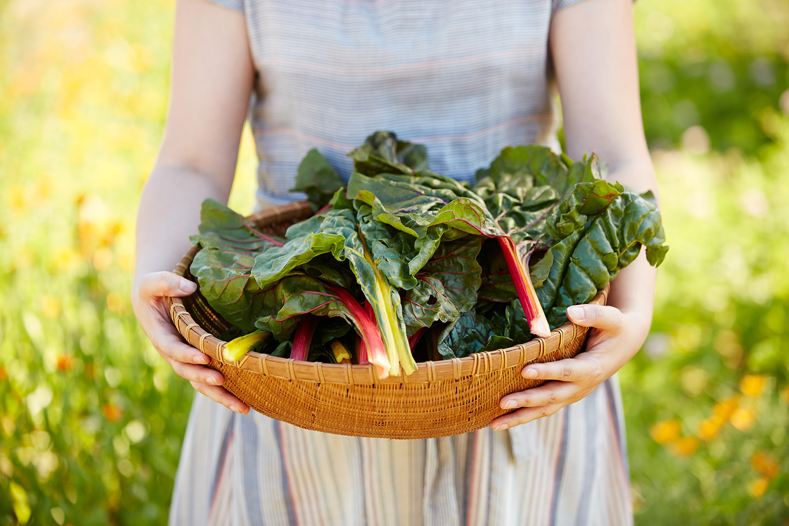 Holding chard at farm  | Trinette+Chris Photographers