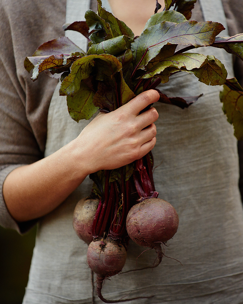 Beets, Point Reyes, CA  | Trinette+Chris Photographers