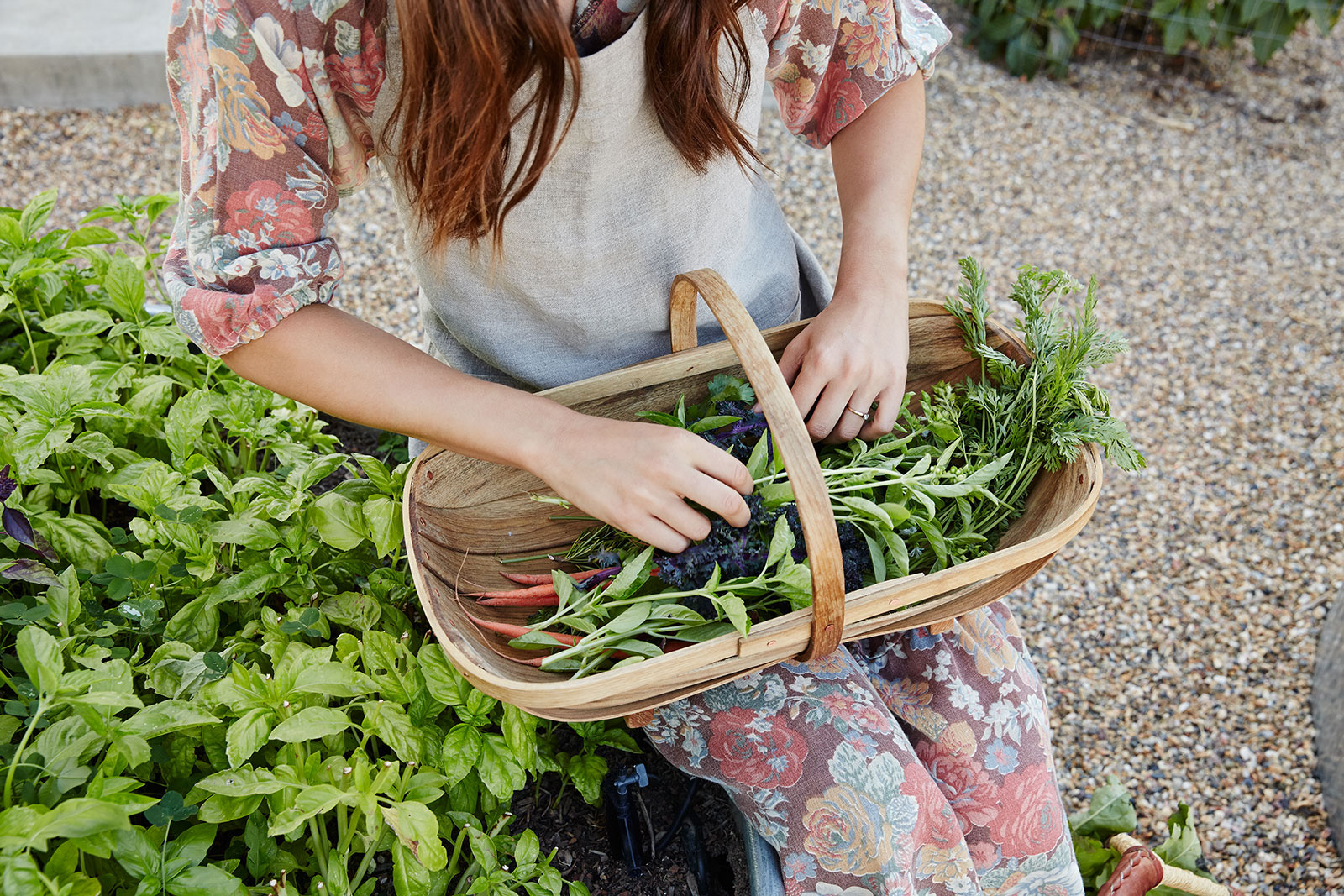 Woman picking basil  | Trinette+Chris Photographers