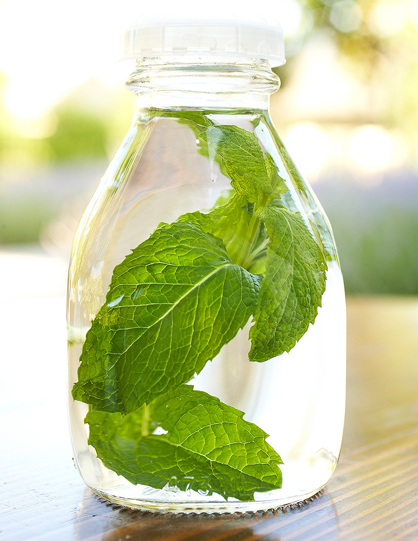 Mint water at Solage Calistoga  | Trinette+Chris Photographers
